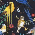 Birds Sinfonia 50x50 cm