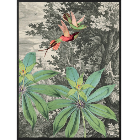 Flying birds poster 50x70