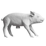 Pig Bank spargris